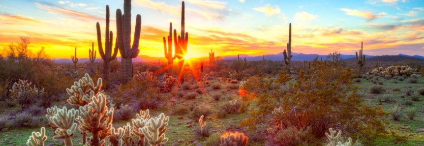 Image of the sun setting over Arizona Wilderness.