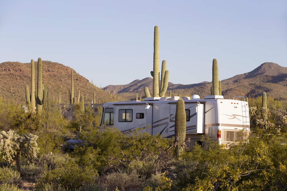 The-Saguaro-National-Park Best Rv Campgrounds to Visit in Phoenix, Arizona State